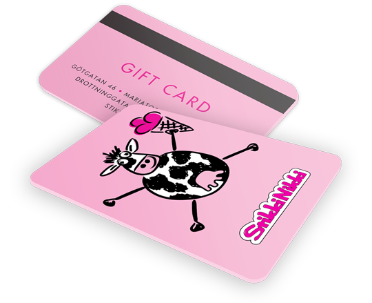 Ice cream gift card Stockholm - Organic Stikki Nikki