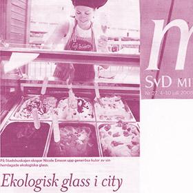 SvD Ekologisk glass i city - STIKKINIKKI